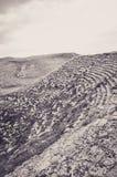 Oud Grieks in een godvergeten gat Verloren Amfitheater Royalty-vrije Stock Afbeeldingen