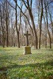Oud historisch begraafplaatskruis stock foto's