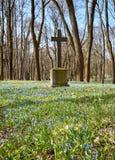 Oud historisch begraafplaatskruis stock foto