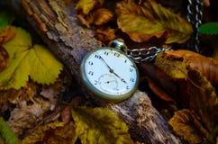 Oud horloge op dalingsbladeren Royalty-vrije Stock Afbeeldingen