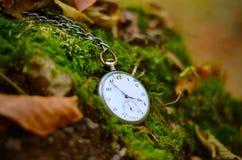 Oud horloge op dalingsbladeren Royalty-vrije Stock Foto's