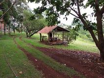 Oud houten chalet rond landbouwbedrijfmeer met mooie bomen stock afbeeldingen