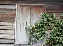 Oud houten venster Royalty-vrije Stock Fotografie