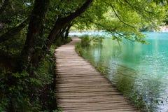 Oud houten voetpad met blauw watergras en bomen in de Nationale Meren van Parkplitvice in Kroatië Royalty-vrije Stock Foto