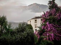 Oud huis in de bergen in de mooie bloemen en de installaties Stock Fotografie