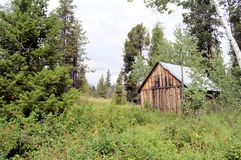 Oud huis in het bos Royalty-vrije Stock Foto