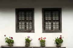 Oud huis met potten van bloemen Stock Foto