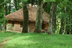 Oud huis met strodak in het dichte bos Stock Foto's