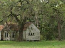 Oud huis onder eiken bomen Stock Foto's