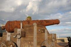 Oud kanon Royalty-vrije Stock Foto's