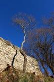 Oud kasteel in Caprese Michelangelo Stock Foto's