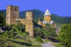 Oud kasteel in de bergen stock afbeelding