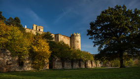 Oud kasteel met boom en aardig weer Royalty-vrije Stock Fotografie