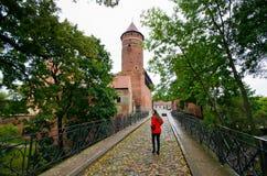 Oud kasteel in Olsztyn, Polen stock fotografie
