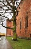 Oud kasteel in Swiecie polen Royalty-vrije Stock Afbeelding
