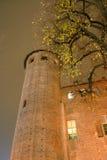 Oud kasteel in Turijn stock afbeelding