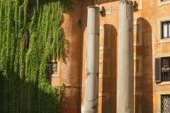 Oud kolommen en huis in Rome Stock Foto's