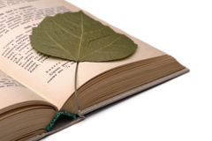 Oud kookboek en droog blad stock afbeeldingen