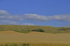 Oud landbouwbedrijf in het land Stock Fotografie