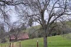 Oud Landbouwbedrijf Verborgen Landschap in Centraal Californië stock fotografie