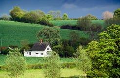 Oud met stro bedekt plattelandshuisje, rollende landbouwgrond, gevlekt zonlicht Stock Afbeeldingen