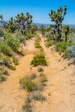 Oud Mojave-Road royalty-vrije stock afbeeldingen