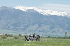 Oud Montana Combine Stock Afbeeldingen