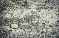 Oud muntstuk op grond stock fotografie