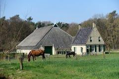 Oud Nederlands landbouwbedrijfhuis Royalty-vrije Stock Afbeeldingen