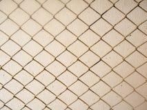 Oud opleverend net op cementmuur Royalty-vrije Stock Foto's