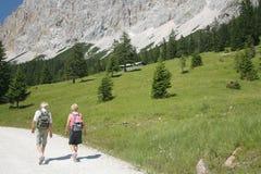 Oud Paar dat in Alpen wandelt stock foto's