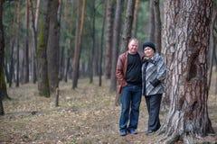 Oud paar die samen in het bos lopen die een goede tijd hebben Het glimlachen en het spreken op de herfst of de lente Stock Foto