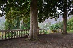 Oud park Royalty-vrije Stock Foto's
