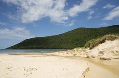 Oud Regelingsstrand, Lord Howe Island stock afbeelding