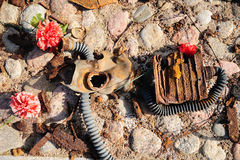 Oud roestig oorlogsgasmasker Royalty-vrije Stock Foto's