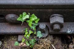 Oud roestig spoor 02 Stock Foto's