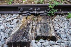 Oud roestig spoor 01 Stock Foto