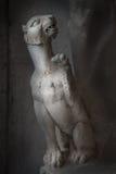 Oud Roman standbeeld van jonge leeuw in Rome op donkere achtergrond Stock Fotografie