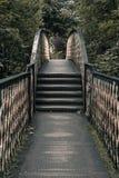 Oud Rusty Bridge Symmetrical Royalty-vrije Stock Foto's