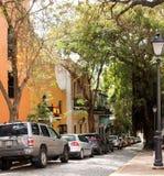 Oud San Juan Tree Lined Street stock afbeelding