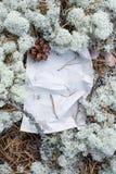 Oud schoon document underfoot in het bos Stock Foto