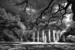 Oud Sheldon Church Ruins Yemassee, Zuid-Carolina Royalty-vrije Stock Foto
