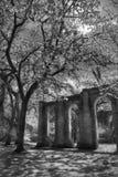 Oud Sheldon Church Ruins Yemassee, Zuid-Carolina Stock Afbeeldingen