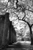Oud Sheldon Church Ruins Yemassee, Zuid-Carolina Royalty-vrije Stock Foto's