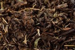 Oud Shu Puerh Chinese vergistte zwarte thee, hoogste mening Grote details! royalty-vrije stock foto's