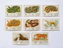 Oud sovjetpostzegels, slangen & dier royalty-vrije stock fotografie