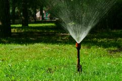 Oud sproeier het water geven gazon in tuin stock foto's
