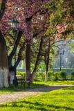 Oud stadspark met lantaarn Stock Foto