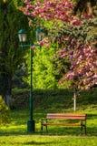 Oud stadspark met lantaarn Stock Foto's