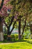 Oud stadspark met lantaarn Stock Afbeelding